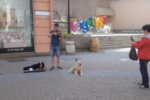 Кучете виеше и валсово клатеше глава в ритъма на цигулката.