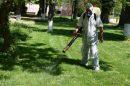 Пръскат срещу комари