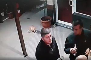 Изверг настъпа котка, хвърли я, а приятеля му извади пистолет