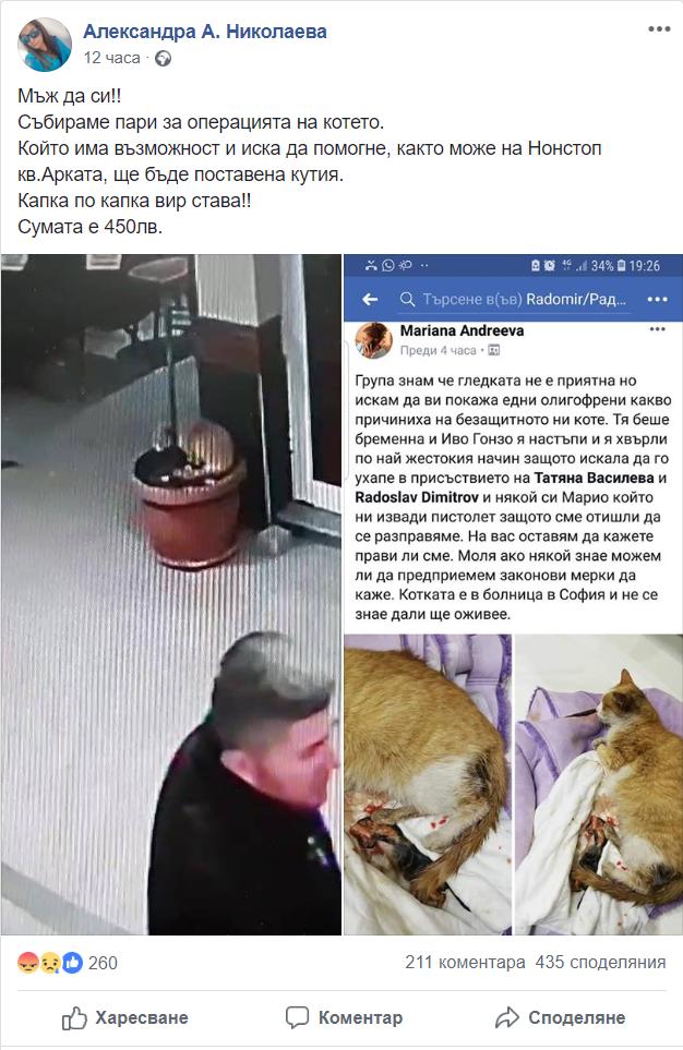 Изверг настъпа котка, хвърлия, а приятеля му извади пистолет