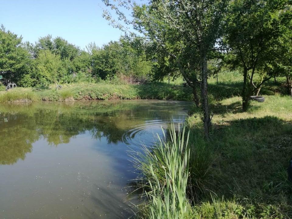 4095accce2d Прохладното езеро за спортен риболов се намира в месността Друма малко след  село Стрелци. Мястото сякаш е направено не само да замяташ въдицата, ...