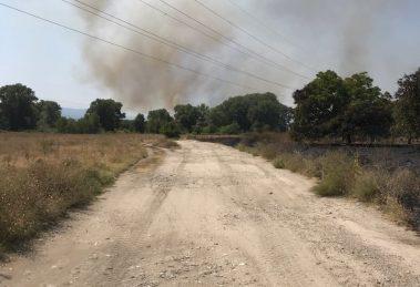 Пожарът пълзи към двореца Кричим