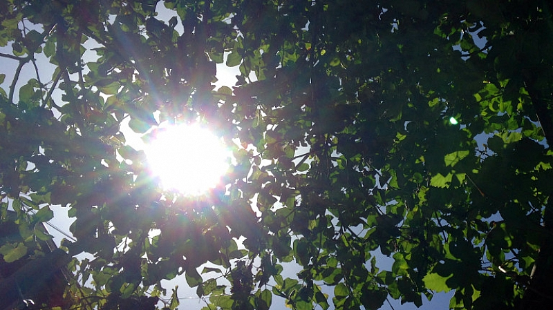 Слънцето ще вземе превес утре.