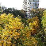 Пловдив през октомври
