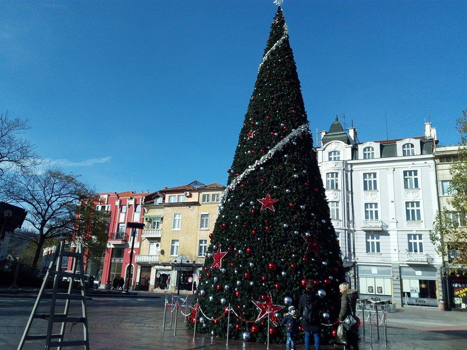 Празничната елха пред Община Пловдив.