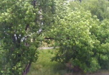 Няма големи щети след обилните дъждове от вчера.