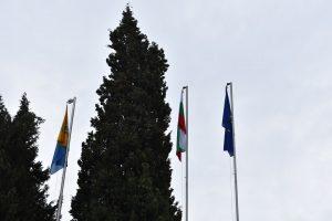 Новите знамена в Асеновград