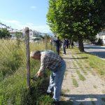 Свалянето на оградата пред имота на Мавродиев