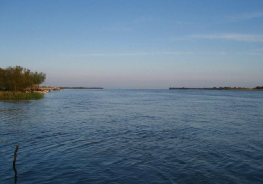 Дунав. Архив