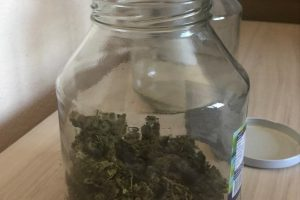 Откритите 700 грама марихуана