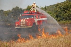 Огнеборците се опитват да потушат пожара