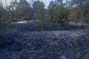 Локализираха пожара край Свиленград