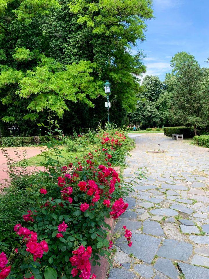 Дондуковата градина