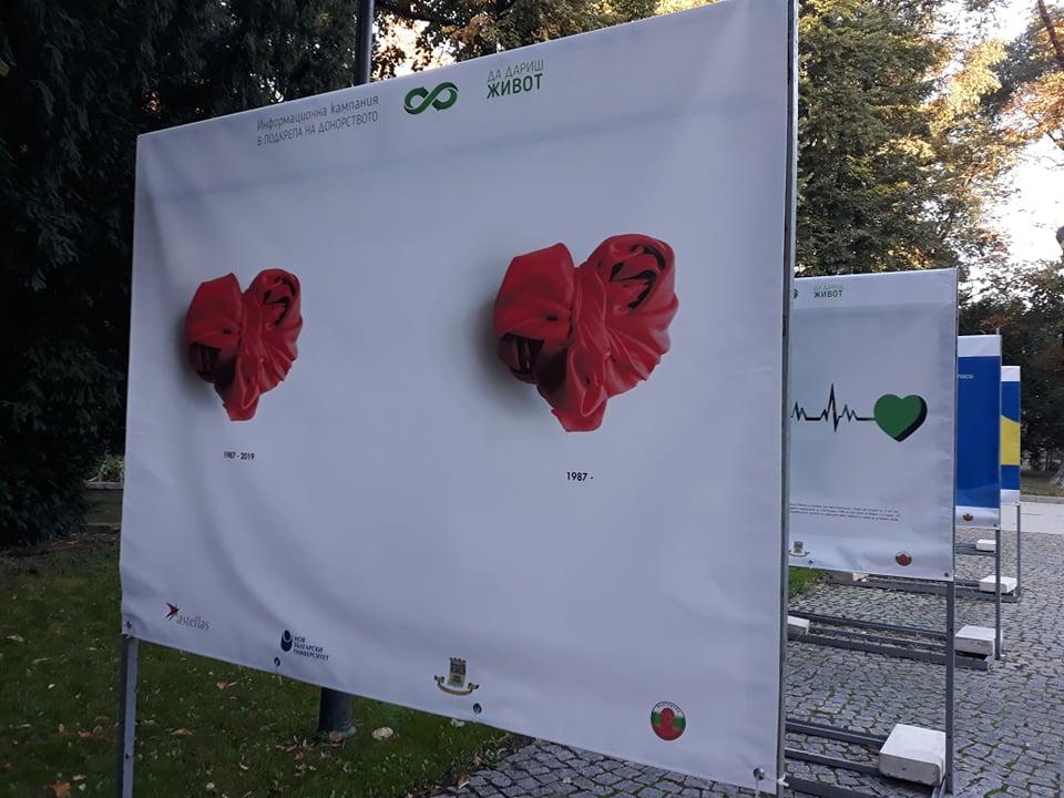 Изложбата е на алеята до фонтана Деметра