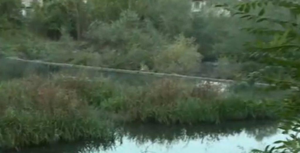 река Златаришка