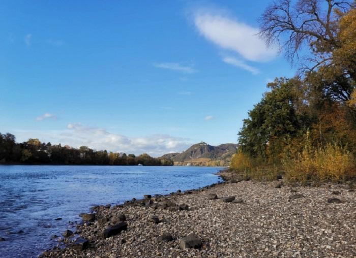 На брега на Рейн