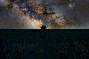 Астрофотография - дебютна изложба на Климент Трендафилов