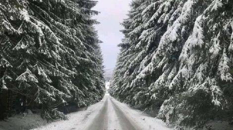 Сняг край Габрово, снимка Meteo Balkans