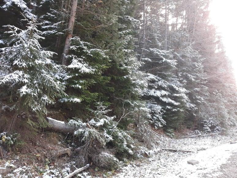 Първи сняг на Бяла черква