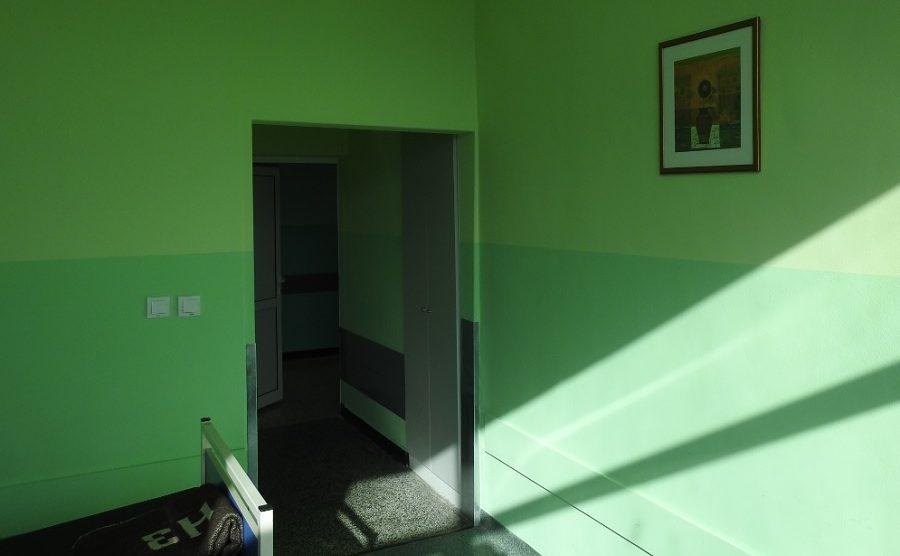 Картините на големия художник Валени Ценов красят стаите в Съдова хирургия