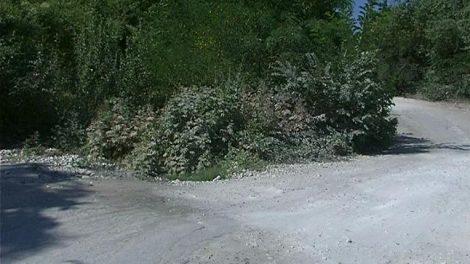 Пътят за Лилково отчаяно се нуждае от ремонт.