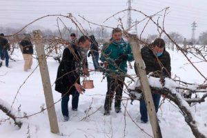 Павел Михайлов, Владимир Маринов и Любен Радев се включиха в традиционния ритуал