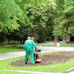 """В ОП """"Градини и паркове"""" има свободни работни места."""