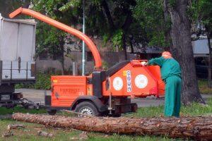 Паднали дървета има в целия град.