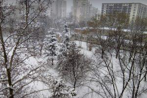 Снежен Пловдив, снимки:ПловдивПрес