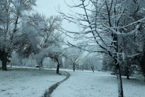 Хубав ден за почитателите на зимата.