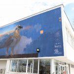 Графитът на брадатия лешояд